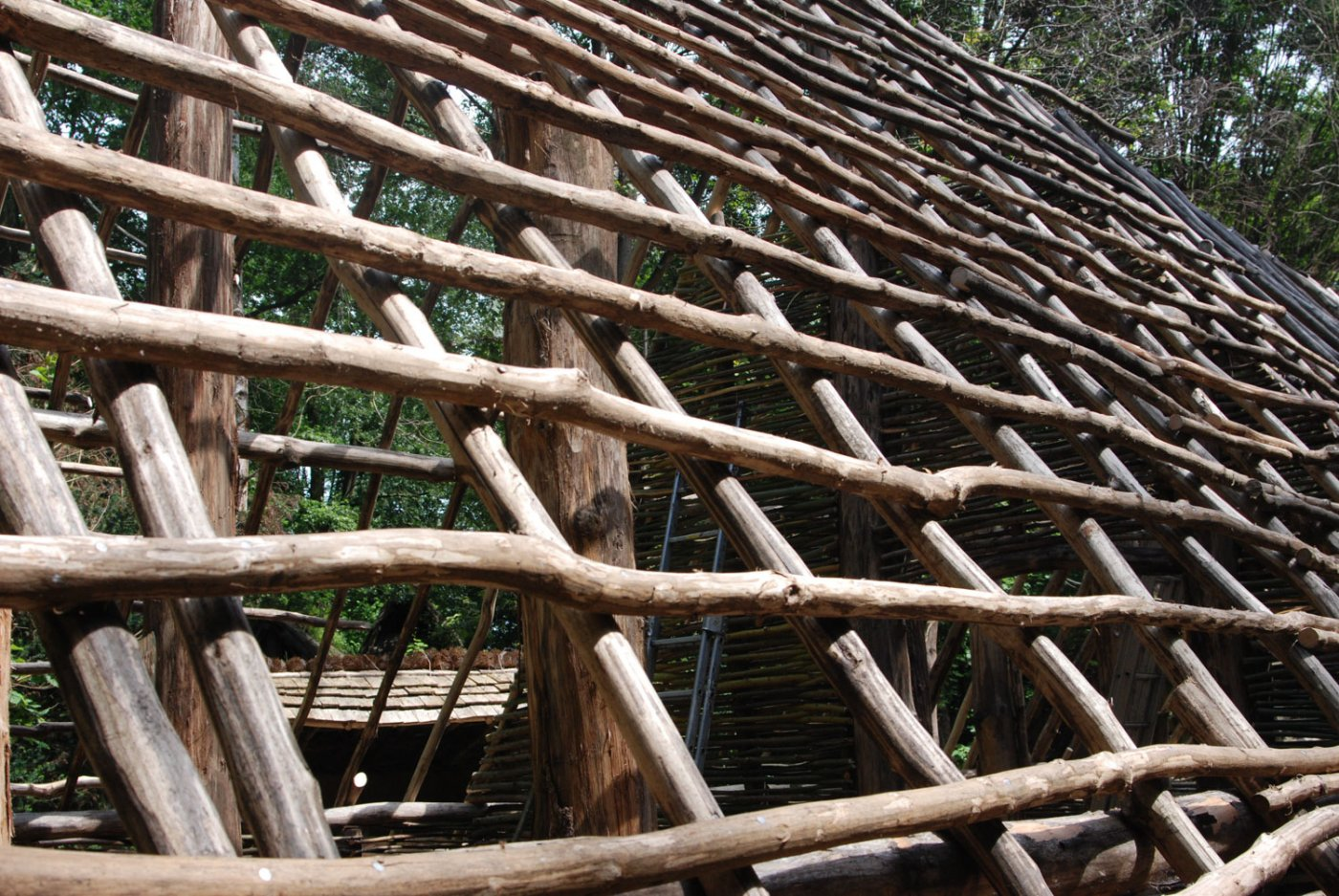 charpente avant pose de la paille reconstitution ferme néolithique