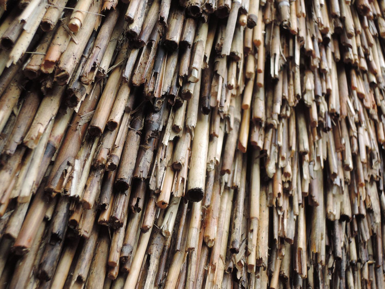 gros plan toit de chaume ferme de blicquy